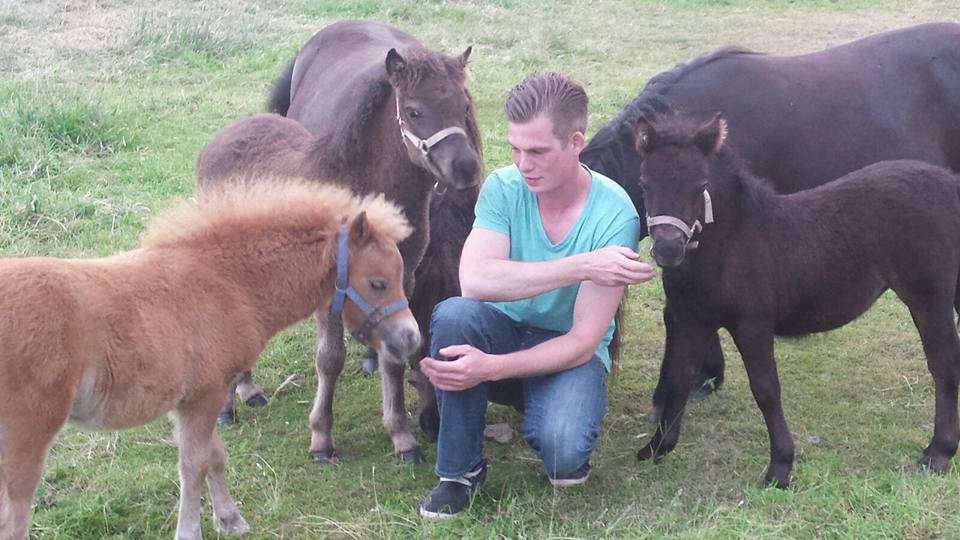 Bram met pony's